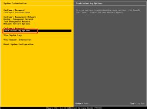 Ekran konfiguracji serwera ESXi